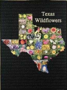 Texas Wildflower Print In Posters Stxop