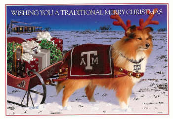 Reveille pulling a Christmas sleigh