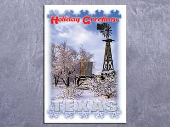 Holiday Greetings Texas Christmas Card